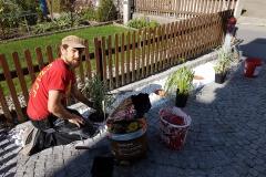 Bepflanzen des kleinen Steinbeets.